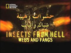 حشرات رهيبة : شباك و أنياب