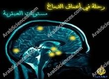 رحلة في أعماق الدماغ : مستويات العبقرية