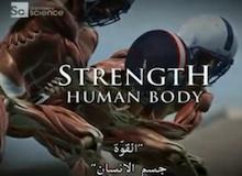 القوة : جسم الإنسان