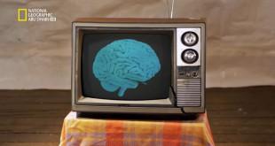 ألعاب العقل HD :خبراء الدماغ