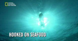 قصة الغذاء HD : الادمان على الماكولات البحرية