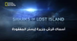 خاص القروش HD : أسماك قرش جزيرة ايستر المفقودة