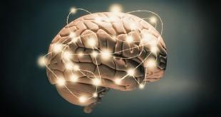 مقال – 9 حقائق مذهلة عن الذاكرة قد لا تعلمها