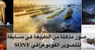 صور مذهلة من الطبيعة في مسابقة SONY للتصوير الفوتوغرافي
