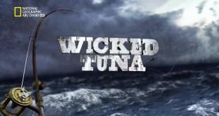 سمكة التونة العنيدة HD : الضربة القاضية