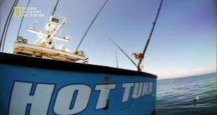 سمكة التونة العنيدة HD : سباق التونة الموسم 4 – ح13