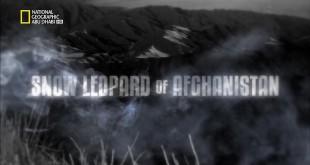 المفترسات HD : نمر الثلج الأفغاني
