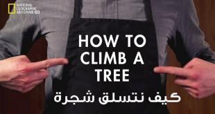 http://arabsciences.com/wp-content/uploads/2016/01/tree-660x330.jpg