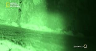 مطاردة الصحون الطائرة HD : مزرعة مخلوقات الفضاء