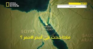 خاص القروش HD : ماذا حدث في البحر الأحمر ؟