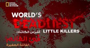أشرس الكائنات في العالم HD : القاتلة الصغيرة