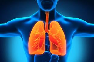 مقال - هذه الأطعمة تساعد على تنظيف الجسم من النيكوتين