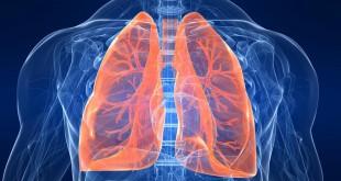 مقال - 5 نصائح لتدريب الرئة و التغلب على ضيق التنفس