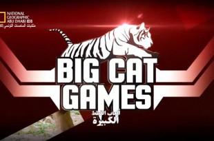 ألعاب القطط الكبيرة HD