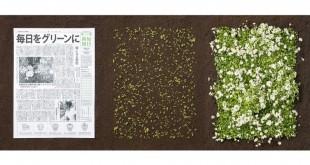 مقتطف - من اليابان : جريدة بعد أن تقرأها تتحول إلى نباتات وزهور