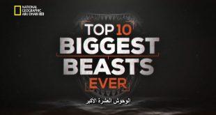 الديناصورات : وحوش رائعة HD : الوحوش العشرة الأكبر