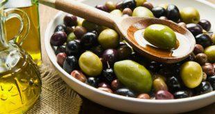 مقال - فوائد صحية وغذائية للزيتون قد لا يعرفها الكثيرون!!