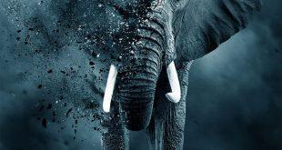 مترجم : لعبة العاج - The Ivory Game