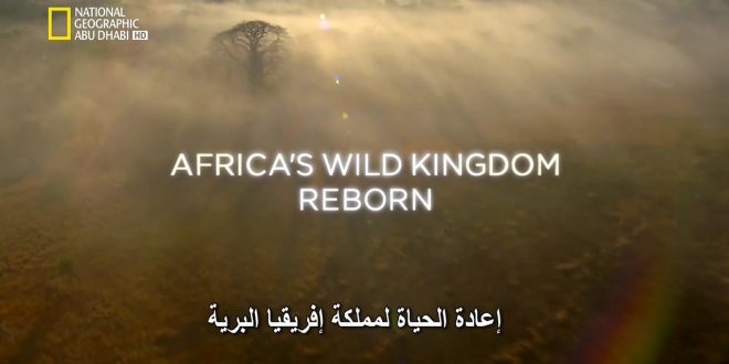 إعادة الحياة لمملكة إفريقيا البرية HD – الحلقة 5